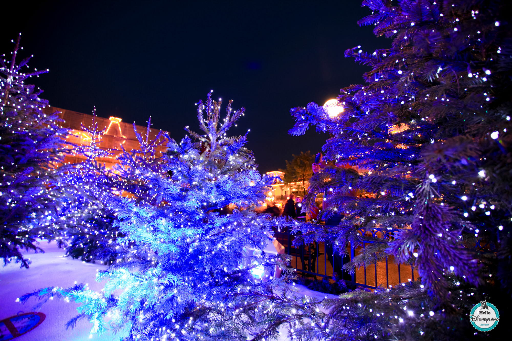 Noel Christmas 2015 - Disneyland Paris