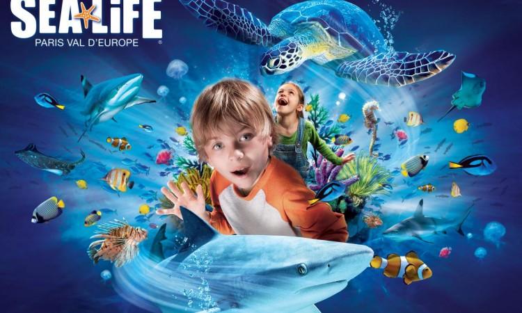 generique-sea-life-avec-logo