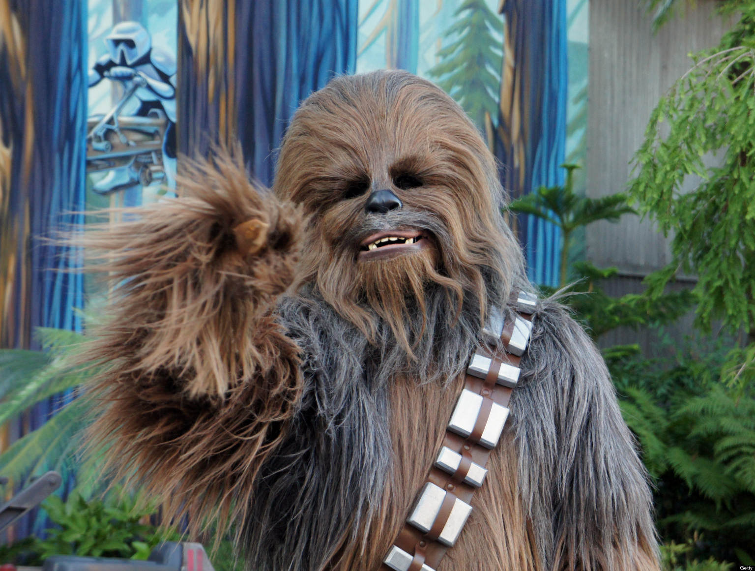 "Chewbacca the Wookiee from ""Star Wars"" greets the press at the re-opening of ""Star Tours"" at Walt Disney World in Orlando, Florida, on May 20, 2011. (Tish Wells/MCT via Getty Images)"