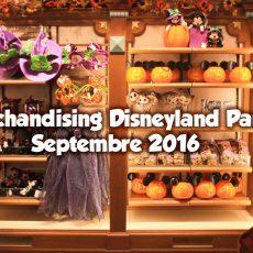 merchandising-dlp-sept2016
