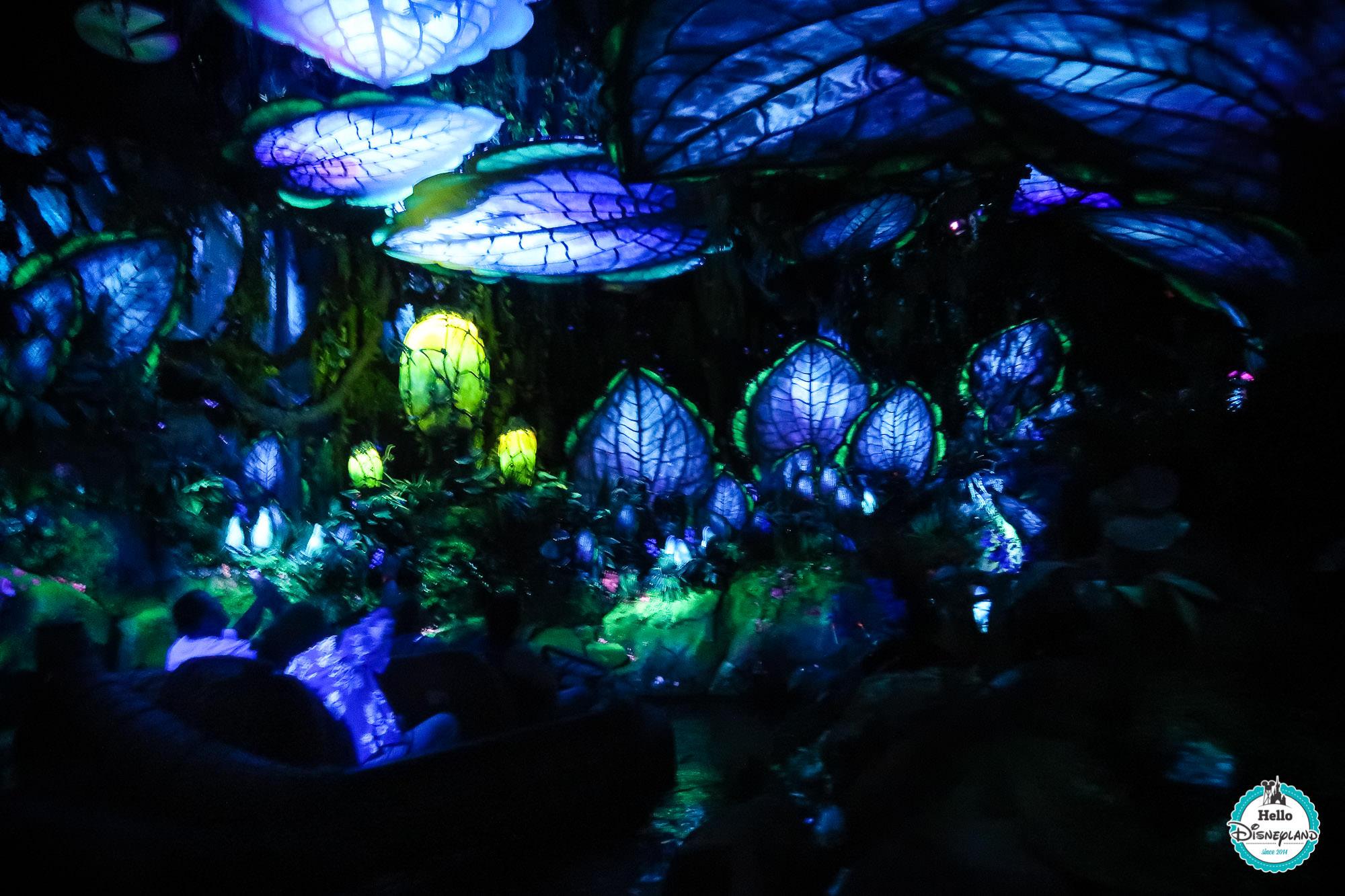 Pandora Avatar - Walt Disney World
