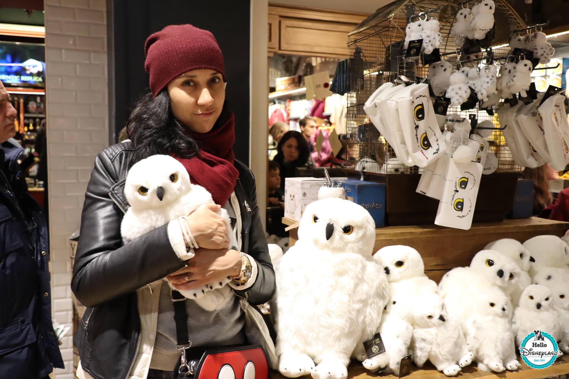 Boutique The Harry Potter Shop - Gare Londres